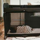 Манеж-кроватка Bugaboo Stardust ����, �������� | Babyshopping